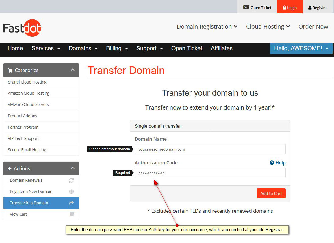 Transfer-your-domain-name-step2-epp-code-authorization-code